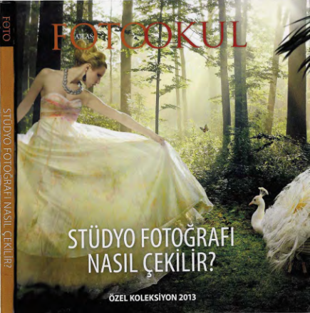 Stüdyo Fotoğrafı hakkında bir kitap.